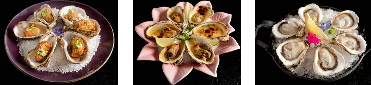 OysterBar-K.saRestaurante-opção-oyster-comer-bem-em-curitiba-foto-divulgação